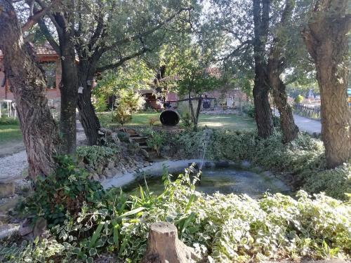 Etno-restoran-basta-Luznice-jezerce-pogled