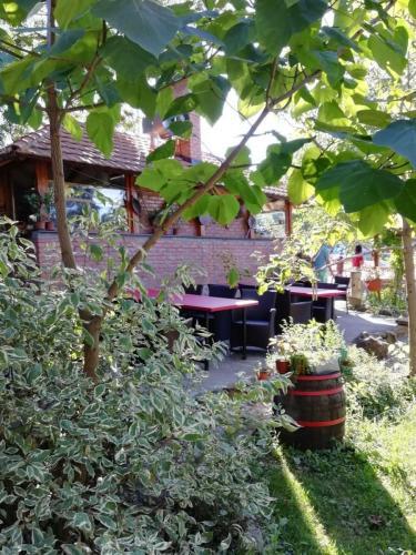 Etno-restoran-basta-Luznice-jezerce-pogled4